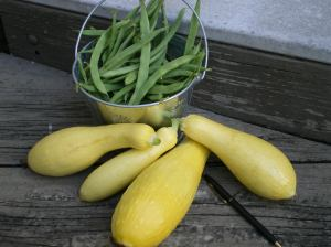 Summer Garden Results